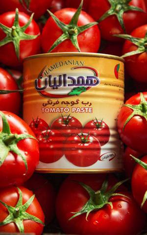 رب گوجه فرنگی همدانیان کلیددار 800گرمی ،عمده فروشی مواد غذایی،پخش مواد غذایی و بهداشتی،خرید مواد غذایی به قیمت کارخانه